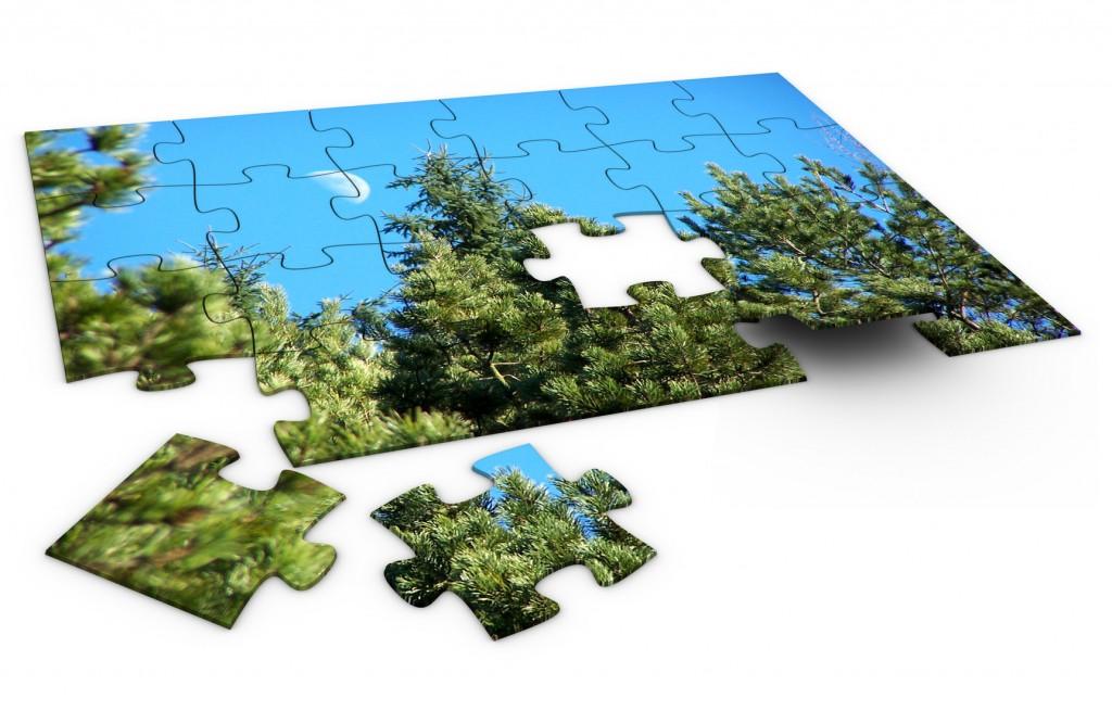 Convierte tu foto favorita en un puzle personalizado